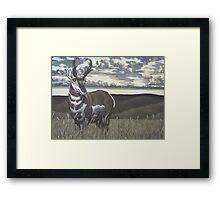Prairie Flyer Framed Print