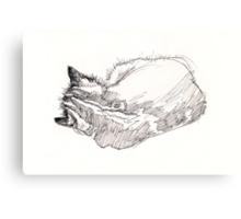 Sleeping kitten, original ink drawing Canvas Print