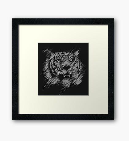 Shading Tiger Framed Print