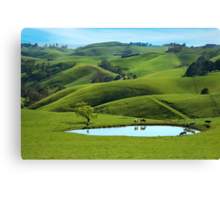 Dairy country Canvas Print