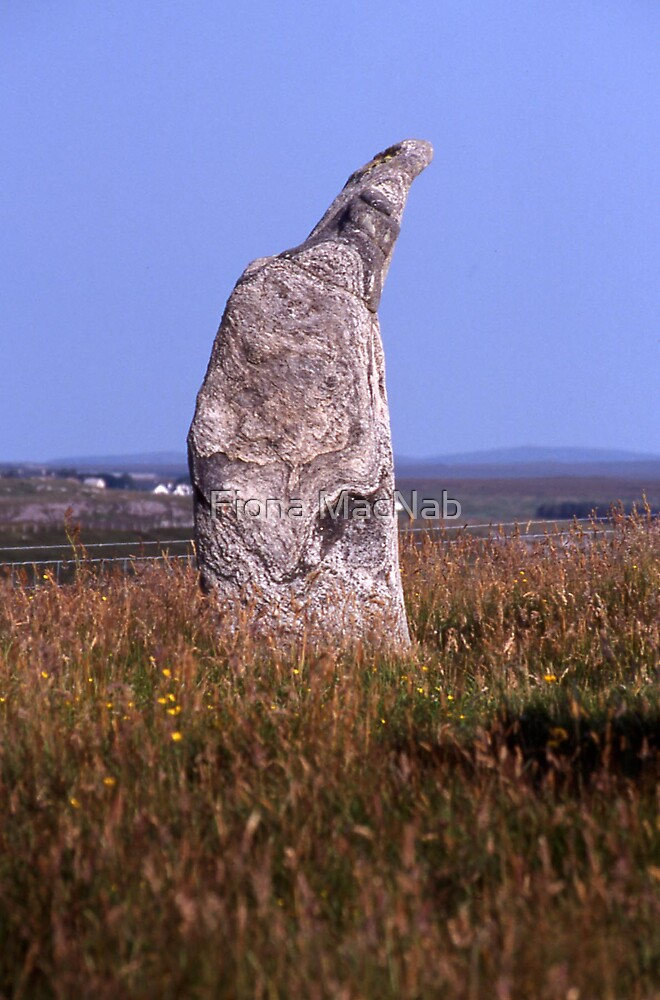Standing Stone by Fiona MacNab
