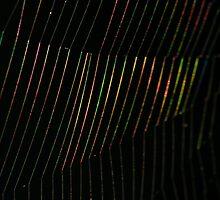 Disco Web by Chris Faithfull