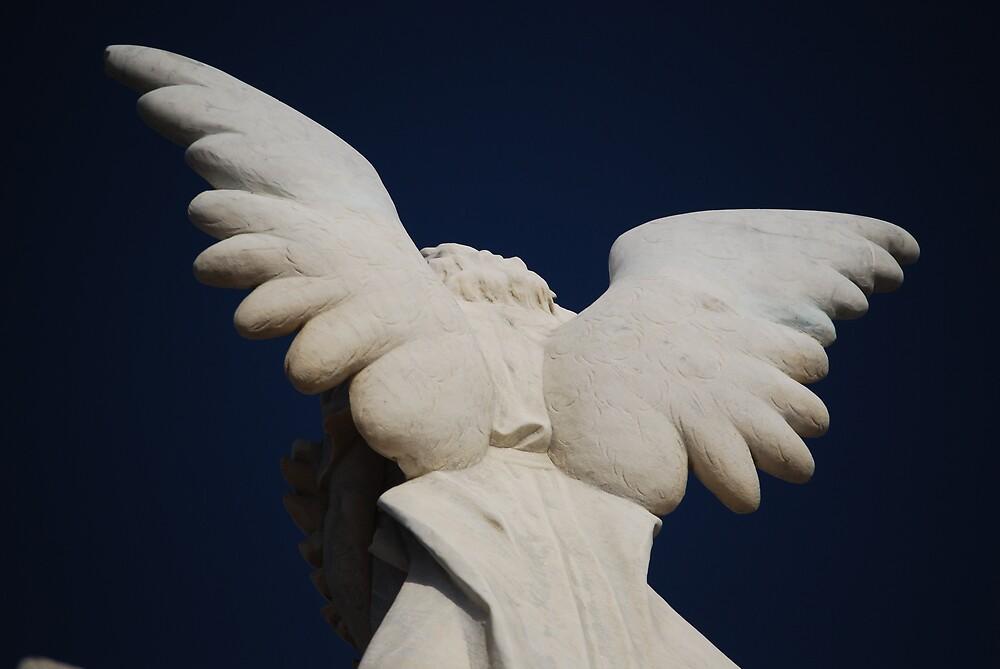 Angels wings by Princessbren2006