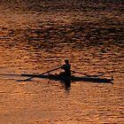 Morning Rower by Josh Meggs