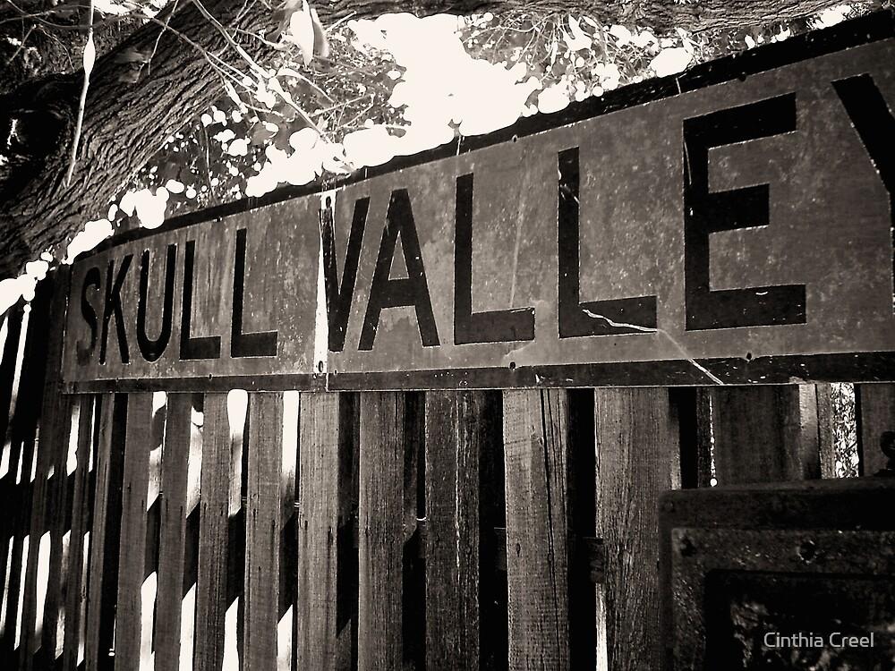 Skull Valley by Cinthia Creel