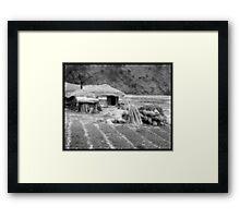 Korean Harvest Framed Print