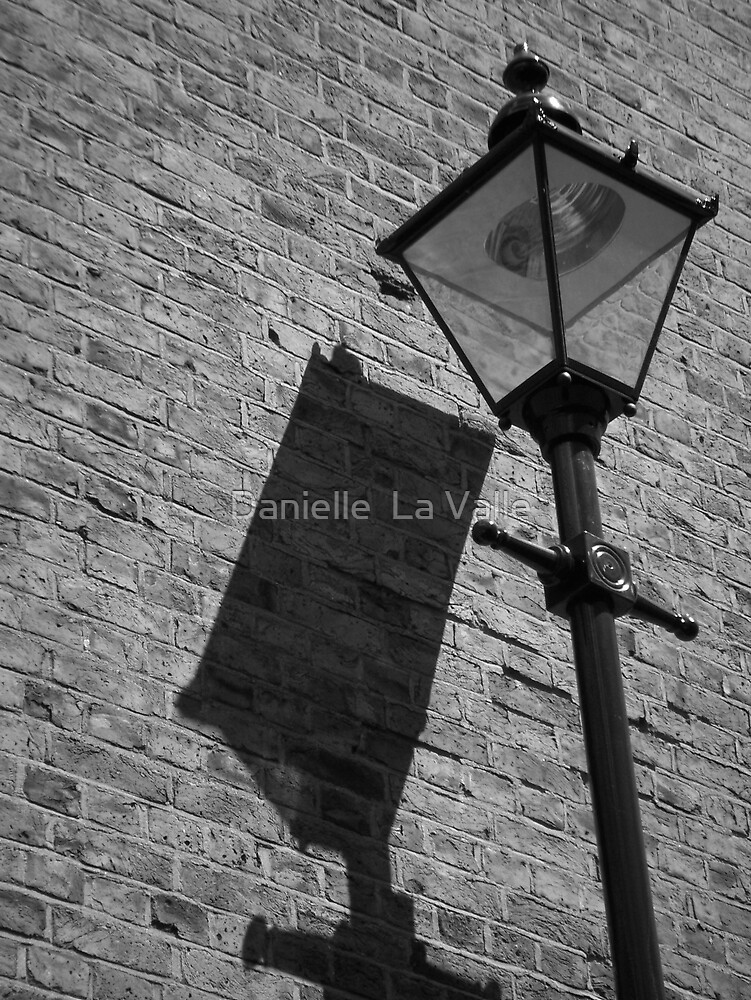 Lamp Post 2 by Danielle  La Valle