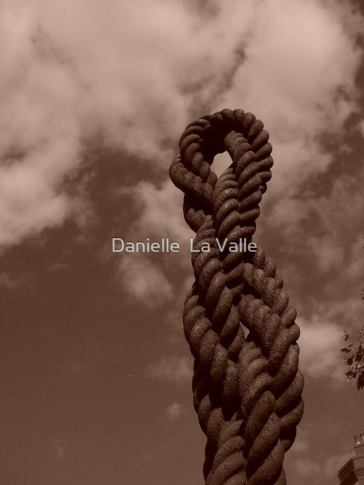 Knot by Danielle  La Valle