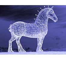 Horse In The Night Photographic Print