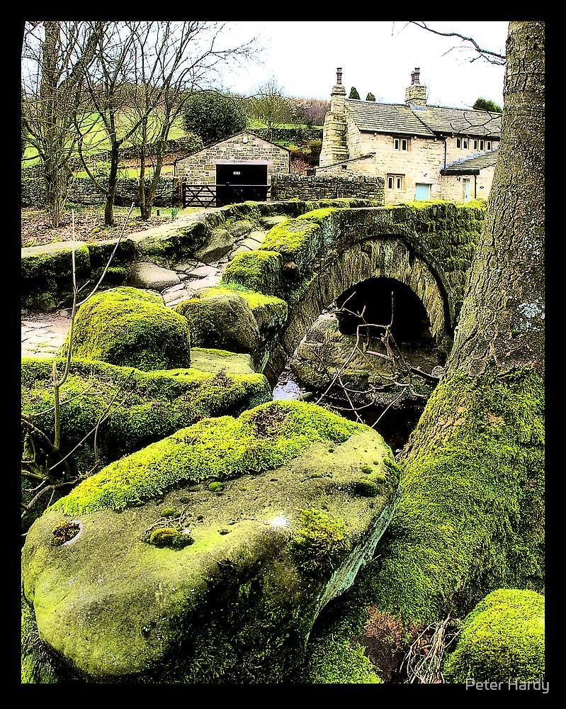 Old Foot Bridge by Peter Hardy