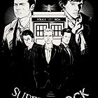 SuperWhoLock  by koroa