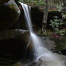 Jenny's Creek Falls by Sherri Hamilton
