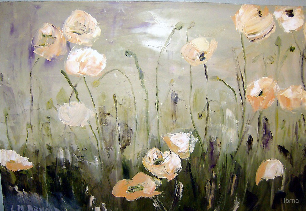 White Poppies by lorna