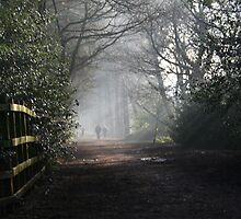 moody walk in the park by jamespics