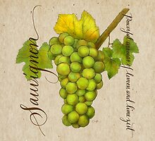 Wine Country Varietal Line from FountainArts™ : Sauvignon by Carol Fountain Nix
