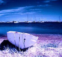 Blue Bay by Naomi Frost