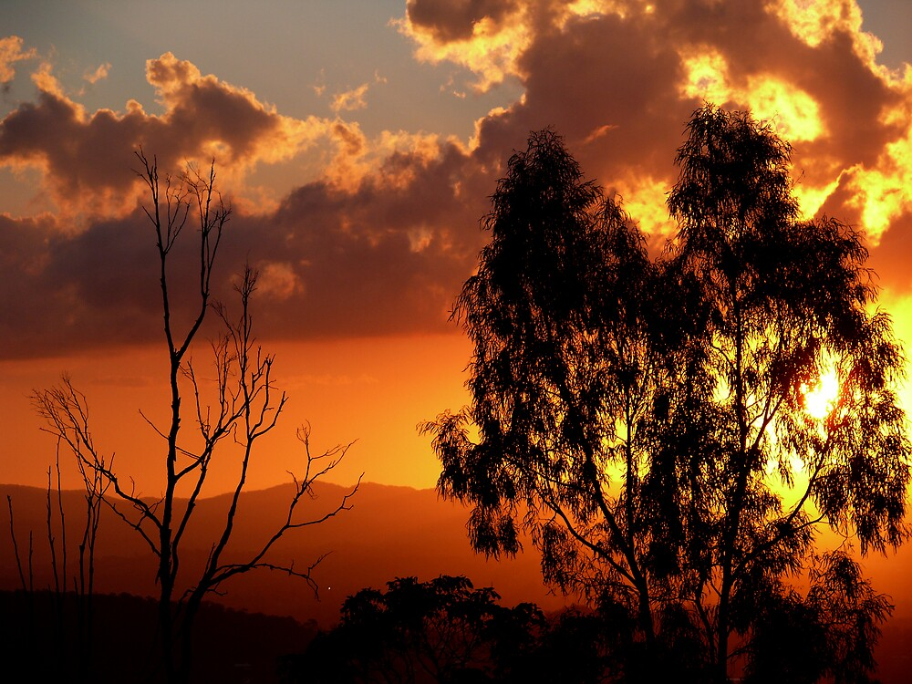 Sunset At Mt Gravatt by Josh Meggs