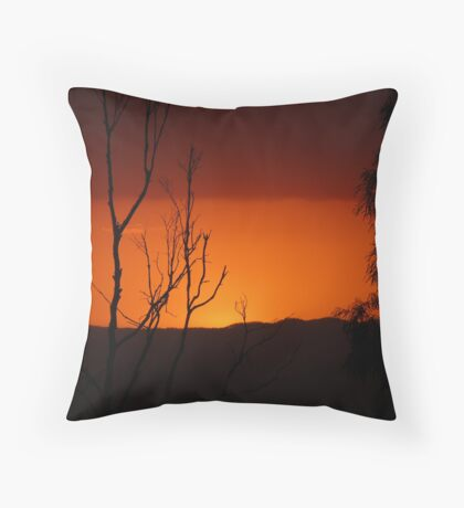 Outback in Brisbane Throw Pillow