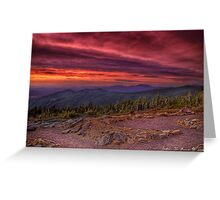 A Sunrise in the Wilderness Greeting Card