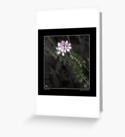 Pathway to the Crown Fine Art Poster Greeting Card