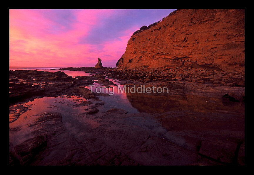in reflection...coastal Vic. by Tony Middleton