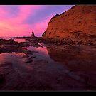 in reflection...coastal Vic. by Tony Middleton