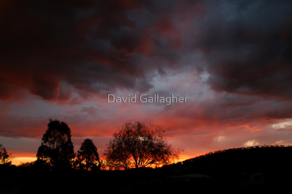 Sunset by David Gallagher
