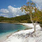 Lake McKenzie by Nicholas Coote