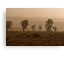 Shades of Dust Canvas Print
