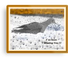 I`ve Been Missing You!!! Metal Print