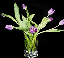 Tulips In Crystal by Maria Dryfhout