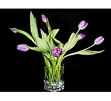Tulips In Crystal Photographic Print