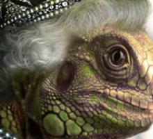 Queen Elizardbeth Sticker