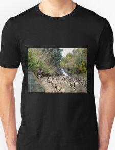 Rennie's River T-Shirt