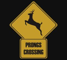 Prongs Crossing by PaulRoberts