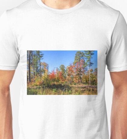 Season of Color Unisex T-Shirt