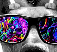 cat sunglasses dog Sticker