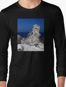 Welcome To Norn Iron...What's The Crac! Long Sleeve T-Shirt
