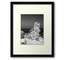 Happy To See You Framed Print