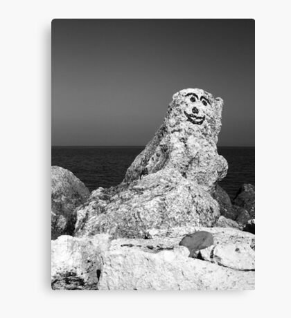 Happy To See You Canvas Print