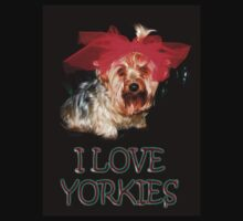 My Yorkie (ZOE) by quin10