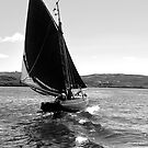 Traditional Sail by Orla Flanagan