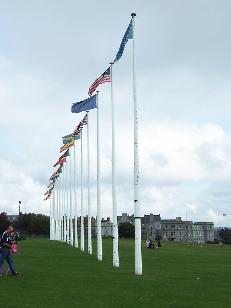 flag poles3 by matjenkins