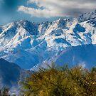 Snowy Sierras by Imagery
