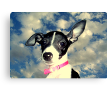 Phoebe in the sky Canvas Print