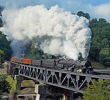 Norfolk & Western #1218 - Coopers, WV by TrainmasterBob