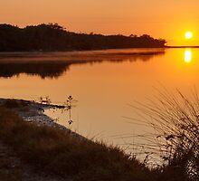 Currimundi Lake by AdamDonnelly