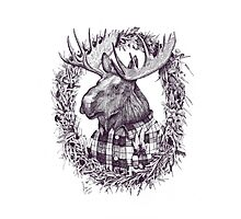 Old Moose Photographic Print