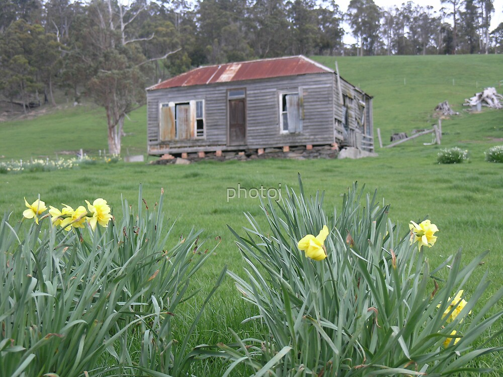 Tas Outback Cottage by photoj