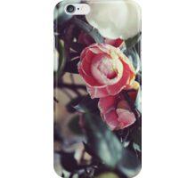Madrid // Roses on Paseo del Prado No.1 iPhone Case/Skin
